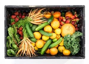 comida-real-laredactorambiental